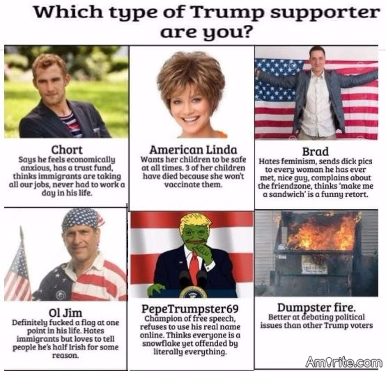 Take our unbiased quiz  Which type of Trump supporter are you